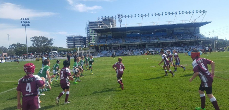 The 11's at Shark Park